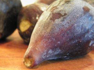 fresh fig